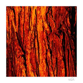 Bark Red