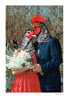 Pastured Romance