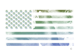 United States of Tropics
