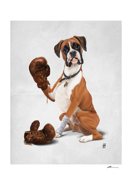 The Boxer (wordless)