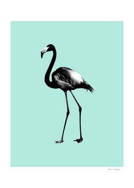 Black Flamingo on Mint #1 #tropical #decor #art
