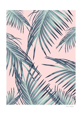 Blush Palm Leaves Dream #1 #tropical #decor #art
