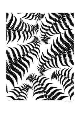 Fern Leaves Pattern - Black Dream #1 #ornamental #decor #art