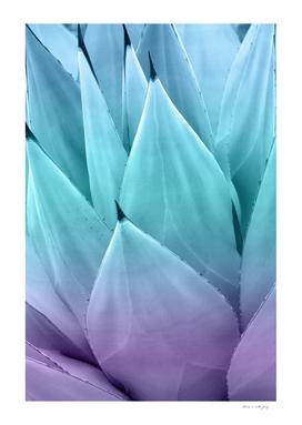 Agave Vibes #1 #tropical #decor #art
