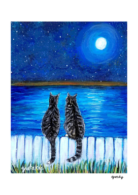 Tabby Cats in the Moonlight