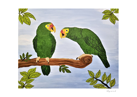 Parrots of the Amazon