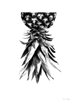 Pineapple Upside Down #1 #tropical #fruit #decor #art