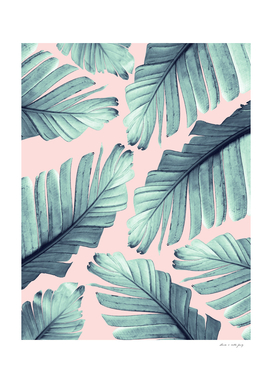 Blush Banana Leaves Dream #7 #tropical #decor #art
