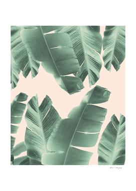 Banana Leaves Tropical Vibes #2 #foliage #decor #art
