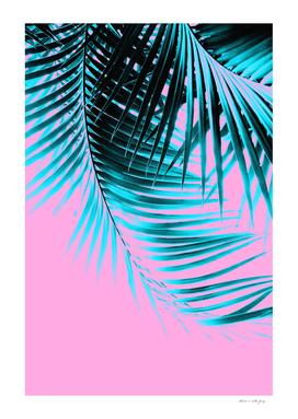 Palm Leaves Summer Vibes #3 #tropical #decor #art