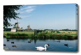 A Beautiful Dutch Scene