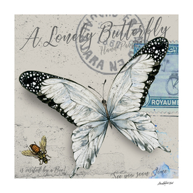 Lonely Butterfly White