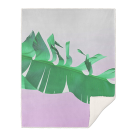 Banana leaf on pink