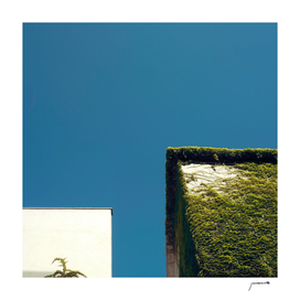 White Square, Green Square, Blue Sky