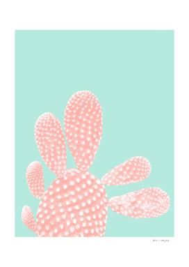 Apricot Blush Cactus on Mint Summer Dream #1 #plant