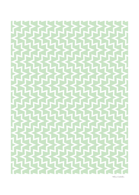 Geometric Sea Urchin Pattern - Light Green & White #609
