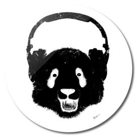 Blackpanda