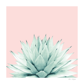 Agave Blush Summer Vibes #2 #tropical #decor #art