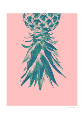 Blush Pineapple Upside Down #1 #tropical #fruit #decor #art