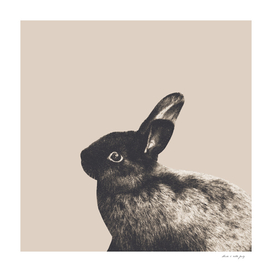 Little Rabbit on Light Beige #1 #decor #art