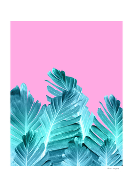 Summer Beach Banana Leaves #1 #tropical #decor #art