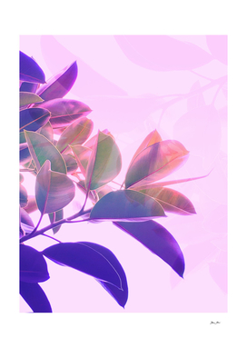 Elegant Tropical Rubber Foliage in Pink and Purple