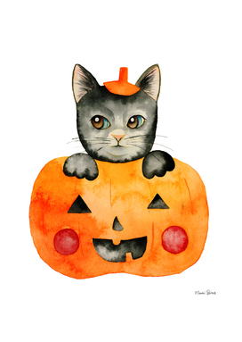 Black Halloween Cat in Jack O' Lantern