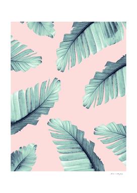 Blush Banana Leaves Dream #6 #tropical #decor #art