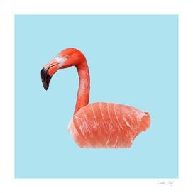 Salmon Flamingo