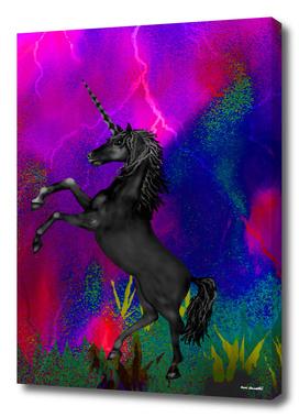 Black Unicorn Horse 1