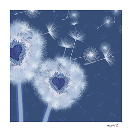 Love Blue Dandelions Hearts Design