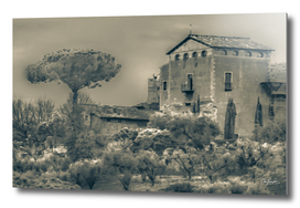 Rural Rome Scene Photo Illustration