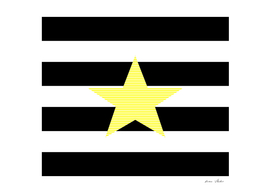 Star - yellow - black and white strips.