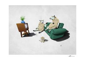 Sheep (Wordless)