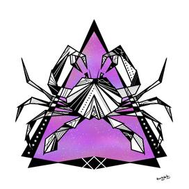 Geometric cancer zodiac sign