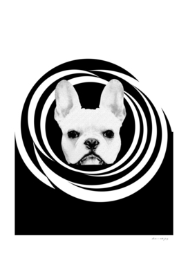 Frenchie Retro Disco Dog #1 #decor #art