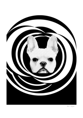 Frenchie Retro Disco Dog #2 #decor #art