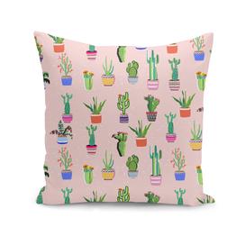 Cacti land Peach