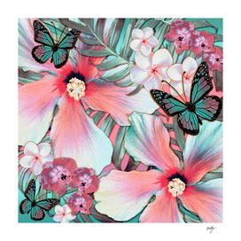 Hibiscus Tropical Peach