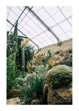 Botanical Gardens - Garden #420