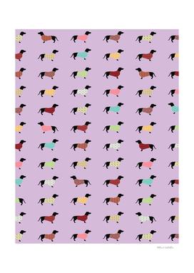 Dachshund Pattern with Purple Sweaters #251