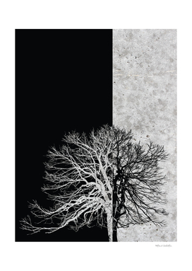 Natural Outlines - Tree Black & Concrete #295