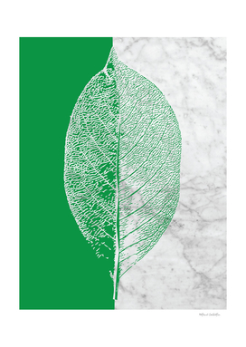 Natural Outlines - Leaf Green & White Marble #452
