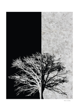 Natural Outlines - Oak Tree Black & Concrete #402