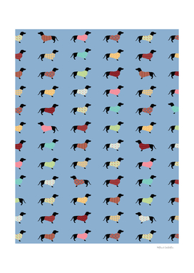 Dachshund Pattern with Blue Sweaters #708