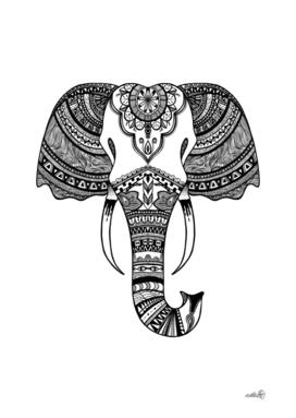 Elephant Illustration/Drawing