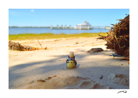 Totoro at the beach by #Bizzartino
