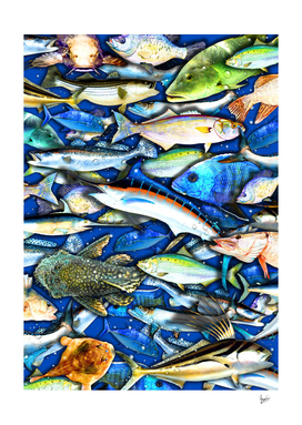 Deep Saltwater Fishing Collage