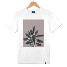 Black Mauve Cactus #1 #plant #decor #art