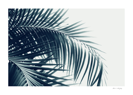 Palm Leaves Green Blue Vibes #3 #tropical #decor #art